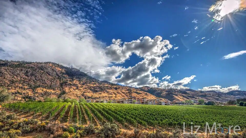 View of the resort vineyards mountains and blue sky in the background