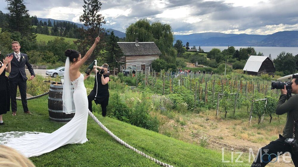 Bride having your picture taken in the vineyard overlooking the lake